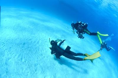 海の底を滑る