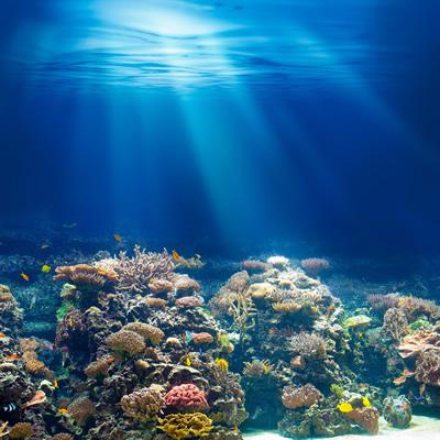 海の底に光さす